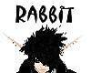 (Rabbit's) Head Sign