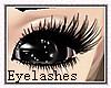 XXL Eyelashes kawaii