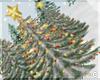 !© Christmas Tree Snow