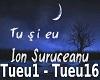 Ion Suruceanu - Tu si Eu