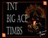 ~TNT~ Big Ace Timbs