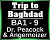 Trip to Baghdad