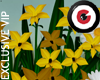 Wild Giant Flowers