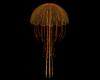 Jellyfish Yellow Orange