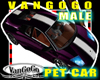 VG Purple AVI Car Male