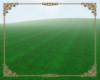 A: Grassy field