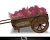 *Ly1* Flower Cart