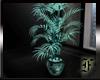 Teal plant