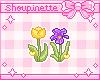 Tulip & Iris