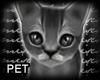 m.. Mimumimu Kitten