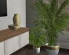 New City Plants