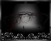 ⚔ Bleeding Heart Tree