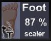 Scaler Foot  87 %