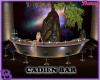 Cadien Bar