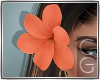 CG | Hibiscus Flower O