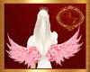 Asas/Wings/Pink