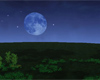 moon 85