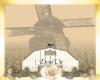 xDxe Vintage M Windmill