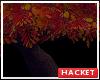 H@K Autumn Tree