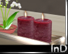IN} Shabby Chic Candles