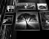 Black & White Wall Pics