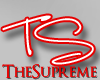 TS Support Sticker