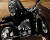 c. Harley Davidson