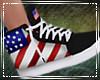 USA Sneakers