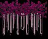 Violet Purple Flowers