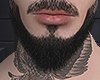 Asteri beard hd