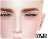 眉g Eyebrows Ginger