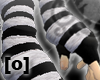 [O] DoM