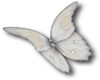 1Butterfly Contra