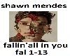 S.Mendes-fallin' all in