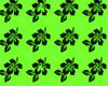 Lime~Flower Beach Shorts