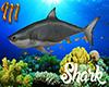 [M] Shark