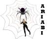 spider hallowen