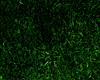 Grassland Addon