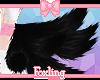 🎀Fox tails Onyx