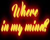 e Where my.. | Neon