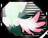 N: Druantia Wings 2