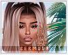 B|Nyane Aruba