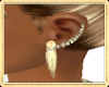 Earrings~gold~