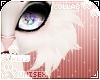 [Pets] Eve   cheek tuft