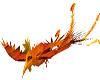 phoenix pet