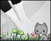 A  White Socks
