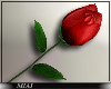 !M! Valentine's rose r