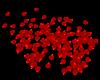 Red Petals (no motion)