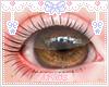 Eyes Brown KIDS