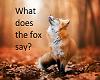 Fox tail animated